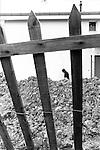 Genève, le 04.2001..© Interfoto