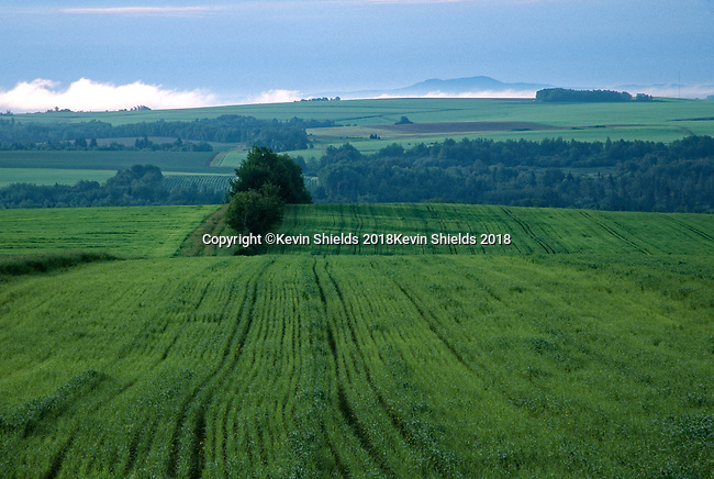 Farm fields in Northern Maine, Aroostook County, Maine, USA