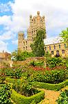 Ely cathedral church,  Ely, Cambridgeshire, England, UK
