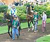 Ali Khali before The Cape Henlopen Stakes at Delaware Park on 7/11/15