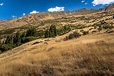 NEW ZEALAND, Wanaka, The Slopes of Roy's Peak, Ben M Thomas