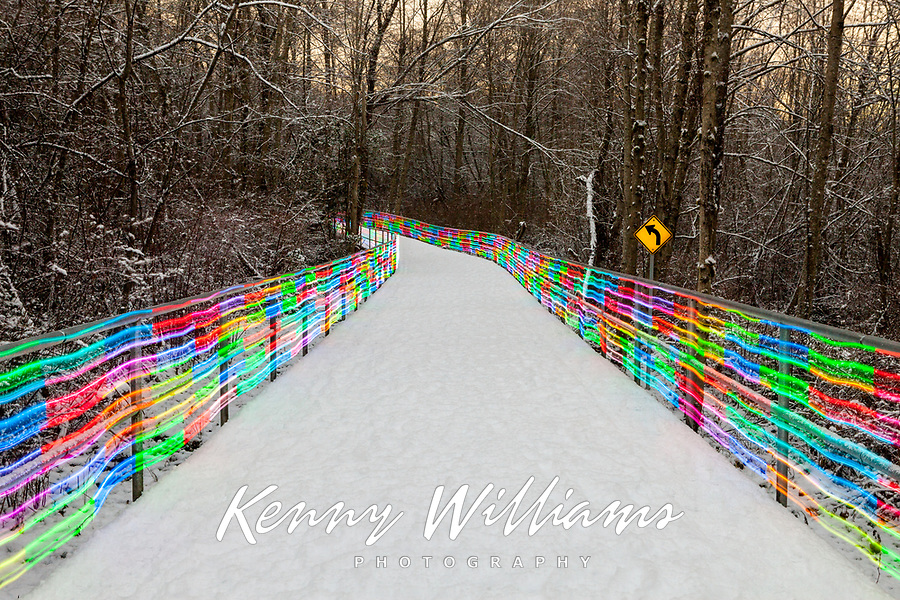 Soos Creek Park Pathway, Painted with Multicolored Neon Lights, Snowy Winter Night, Kent, WA, USA.