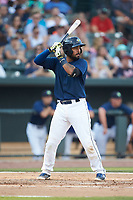 Ali Sanchez (20) of the Columbia Fireflies at bat against the Charleston RiverDogs at Spirit Communications Park on June 9, 2017 in Columbia, South Carolina.  The Fireflies defeated the RiverDogs 3-1.  (Brian Westerholt/Four Seam Images)