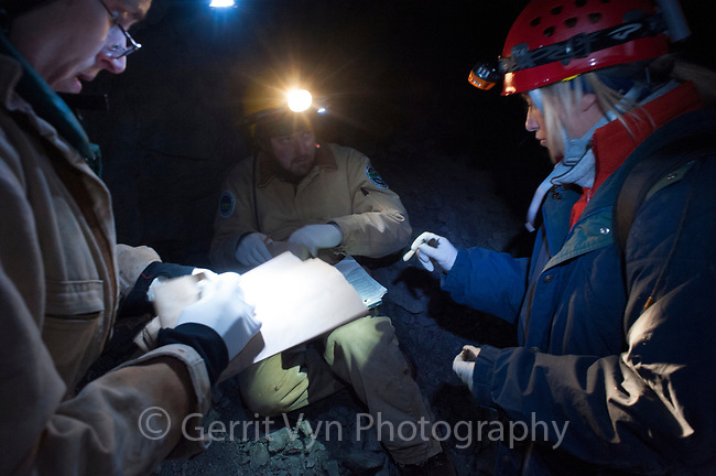 Researchers surveying bats in a mine in eastern New York. Ulster County. January.