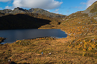 Hiker walking through autumn mountain landscape near lake Vikjordvatnet, Vestvågøy, Lofoten Islands, Norway