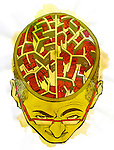 Illustration of human brain depicting the source of knowledge
