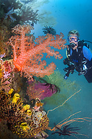Diver and spikey soft coral, Dendronephthya sp., Madang, Papua New Guinea, Pacific Ocean (MR), MR