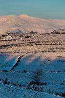 Europe, France, Auvergne, Cantal (15), env de Paulhac:  Planèze de Saint-Flour et Plomb du Cantal   //  Europe, France, Auvergne, Cantal, near Paulhac:  Saint Flour planeze and Plomb du Cantal