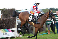 18.09.2011 - Plumpton Racecourse Ladies Day