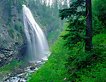 Mount Rainier National Park, WA<br /> <br /> Narada Falls and mist-filled canyon on the Paradise River