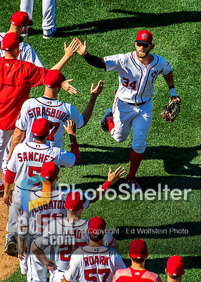 9 July 2017: Washington Nationals outfielder Bryce Harper celebrates a win with teammates at Nationals Park in Washington, DC. The Nationals defeated the Atlanta Braves to split their 4-game series. Mandatory Credit: Ed Wolfstein Photo *** RAW (NEF) Image File Available ***