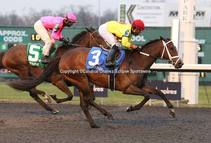 March 14, 2020 : #3 Queen of God and jockey Irad Ortiz Jr. win the 38th running of The Maxim Crane Works Bourbonette Oaks (Listed) $150,000 for owner Winners Circle Racing and trainer Miachel Maker at Turfway Park in Florence, KY on March 14, 2020.  Candice Chavez/ESW/CSM