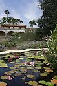 Lily pads and pink lillies at San Juan Capistrano