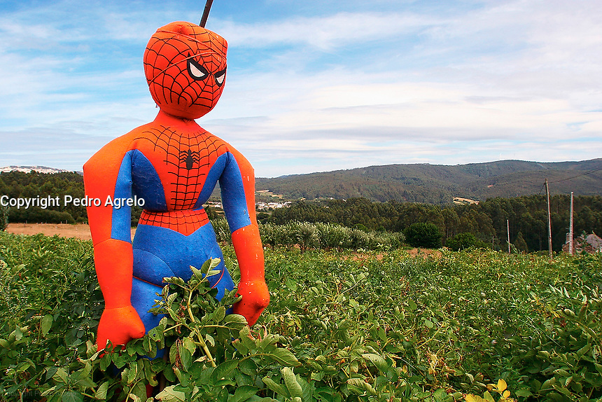 spiderman espantapajaros