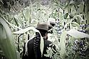 Members of The Pakarinka Sisari Ancestral Wisdom Center near Otavalo, Ecuador, head into the fields to harvest fava beans.