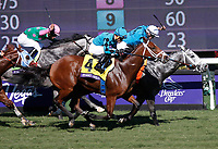 DEL MAR, CA - NOVEMBER 04: Stormy Liberal #4, ridden by Joel Rosario, wins the Breeders' Cup Turf Sprint race on Day 2 of the 2017 Breeders' Cup World Championships at Del Mar Racing Club on November 4, 2017 in Del Mar, California. (Photo by Kazushi Ishida/Eclipse Sportswire/Breeders Cup)