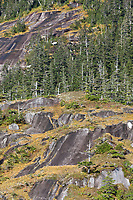 Granite rock along western Prince William Sound, Chugach National Forest, Kenai mountains, Alaska.