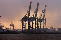 Cranes in the Hamburg docks in a snow flurry, Hamburg, Germany