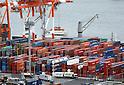 Cranes at Tokyo Bay
