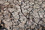 DILMANYALE, KENYA - JULY 4:  Cracked soil in a dry water dam on July 4, 2011 in Dilmanyale, Kenya. Two successive poor rains, entrenched poverty and lack of investment in affected areas have pushed millions of people into a fight for survival in the Horn of Africa. This is the driest this area has been since 60 years. People in smaller town are usually fortunate to have water. In rural areas, most wells has dried up and some people walk as much as eight kilometers to fetch water. Most of the livestock has perished and the remaining stock has often been taken far away for better conditions. Many has even crossed into neighboring Somalia for better pasture. (Photo by Per-Anders Pettersson)