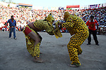 Mexican Tiger wrestlers struggle each other while neighbors attend the Porrazo de los Tigres or Tecuanes during the beggining of the festivities for the year end in Chilpancingo city in southern state of Guerrero, December 21, 2008. Thousands of people attend the festivities and hundreds of neighbors march dressed in traditional disguises like Devils, Tlacololeros, Tigers and wearing traditional masks to mark the year ending and the beginning of the new year. Photo by Heriberto Rodriguez