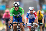 Philippe Gilbert (BEL) Deceuninck-Quick Step wearing the points Green Jersey crosses the finish line at the end of Stage 2 of the Criterium du Dauphine 2019, running 180km from Mauriac to Craponne-sur-Arzon, France. 9th June 2019<br /> Picture: ASO/Alex Broadway | Cyclefile<br /> All photos usage must carry mandatory copyright credit (© Cyclefile | ASO/Alex Broadway)