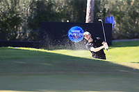 Thomas Pieters (BEL) chips from a bunker at the 17th green during Friday's Round 2 of the 2018 Turkish Airlines Open hosted by Regnum Carya Golf &amp; Spa Resort, Antalya, Turkey. 2nd November 2018.<br /> Picture: Eoin Clarke | Golffile<br /> <br /> <br /> All photos usage must carry mandatory copyright credit (&copy; Golffile | Eoin Clarke)