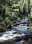 Chiquito Creek flows in the Sierra National Forest, near Oakhurst, Ca., on July 12, 2011..Photo by Cathleen Allison