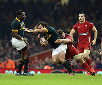 Pictured: Bismarck du Plessis of South Africa (with ball) is grabbed from behind by Gethin Jenkins of Wales Saturday 29 November 2014<br />