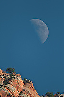Moon Over Zion National Park, Springdale, Utah