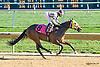 Run Harter winning at Delaware Park on 10/8/15