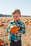 USA, Oregon, Bend, a young boy chooses a pumpkin at the annual pumpkin patch located in Terrebone near Smith Rock State Park