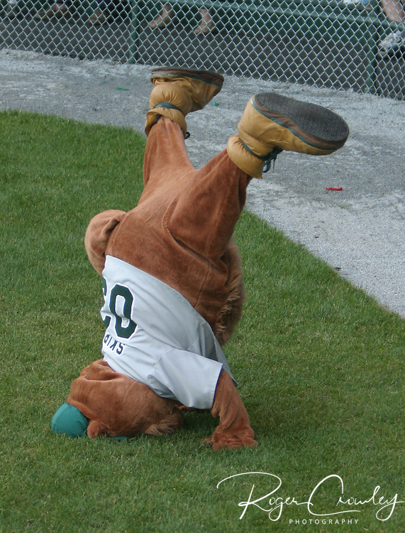 Skip the Woodchuck is the mascot of the NECBL baseball team -Vermont Mountaineers. This is a collection of photos from the 2003 to 2010 seasons.