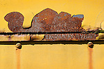 Rust abstraction appearing like turtle on old engine.