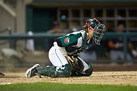 Fort Wayne TinCaps catcher Blake Hunt (12) blocks a throw at home late during the game against the Bowling Green Hot Rods at Parkview Field on August 20, 2019 in Fort Wayne, Indiana. The Hot Rods defeated the TinCaps 6-5. (Brian Westerholt/Four Seam Images)