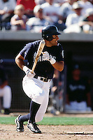 Shane Monahan of the Seattle Mariners during a Spring Training game  at the Peoria Sports Complex circa 1999 in Anaheim, California. (Larry Goren/Four Seam Images)