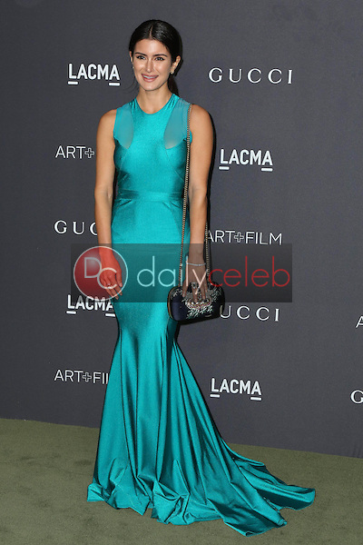 Roxy Sowlaty<br /> at the 2016 LACMA Art +  Film Gala, LACMA, Los Angeles, CA 10-29-16<br /> David Edwards/DailyCeleb.com 818-249-4998