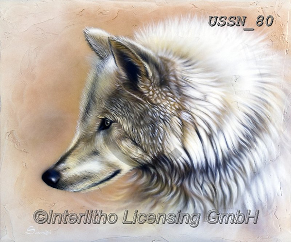 Sandi, REALISTIC ANIMALS, REALISTISCHE TIERE, ANIMALES REALISTICOS, paintings+++++,USSN80,#a#, EVERYDAY ,wolf,wolves ,wolf,wolves ,puzzles