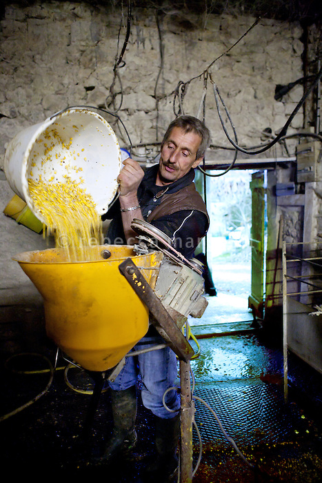 Bernard Lavergne prepares maize meal to force-feed his geese, Courbiac de Tournon, France, Monday, November 22, 2010. <br />