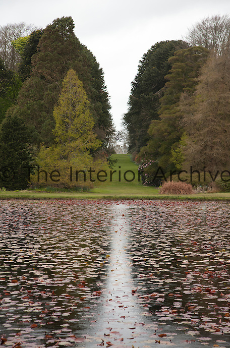 Red water lilies fill the round pond in the grounds of Lochinch