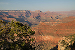 Yavapi Point Overlook at sunset along the South Rim of Grand Canyon National Park, Arizona .  John offers private photo tours in Grand Canyon National Park and throughout Arizona, Utah and Colorado. Year-round.