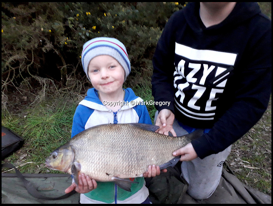 BNPS.co.uk (01202 558833)<br />Pic:     MarkGregory/BNPS<br /> <br /> Connor Gregory, 4.<br /> <br /> A young angler has been lauded for capturing an enormous turtle that had been wreaking havoc at a carp fishing lake.<br /> <br /> Myrtle the Turtle had previously been flying under the radar of bosses at Mesters Lake near Scunthorpe, Lincs, biting the tails off tench fish.<br /> <br /> The mystery of what was causing the gruesome injuries was stumping experts before Myrtle was discovered by four-year-old Connor Brocklesby.