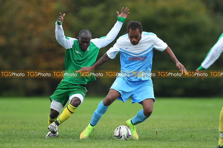 Clapton Rangers (blue/white) vs London Meteors - Hackney & Leyton Sunday League Football at South Marsh, Hackney , London - 26/10/14 - MANDATORY CREDIT: Gavin Ellis/TGSPHOTO - Self billing applies where appropriate - contact@tgsphoto.co.uk - NO UNPAID USE
