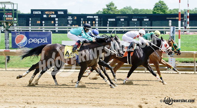 Coldblack winning thru disqualification of #2 Tinder Lord at Delaware Park on 7/30/14