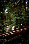 Hikers cross a bridge in Muir Woods National Monument, January 26, 2011.