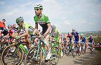 local rider Laurens Ten Dam (NLD/Belkin) up the steep Gulperberg<br /> <br /> Amstel Gold Race 2014