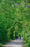 419-51 Two women hiking along I&M Canal Hiking Trail, between Chanahon State Park and McKinley Woods Forest Preserve in Will County, Illinois