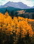 Autumn,Gore Range,Colorado