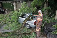 SAO PAULO,SP, 24.11.2015 - QUEDA-ARVORE - Um grande galho caiu sobre um automóvel na Aenida Guilherme Drommond Villares, no bairro do Morumbi, zona sul da cidade de São Paulo nesta terça-feira, (24). (Foto: Douglas Pingituro/Brazil Photo Press)