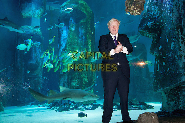 The Mayor of London Boris Johnson visits the London Aquarium's newest attraction, the shark tank, to promote the range of summer promotions available to Londoners and tourists alike, including 2 for 1 ticket offers and money off promotions. London Aquarium, London, England..August 17th, 2012.half length black white purple tie shirt suit water animals full 3/4.CAP/BF.©Bob Fidgeon/Capital Pictures.